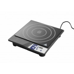 Plaque induction 2500W